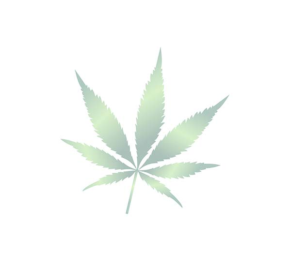 hemp-plant-leaf