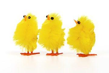 Easter-chicks-2018
